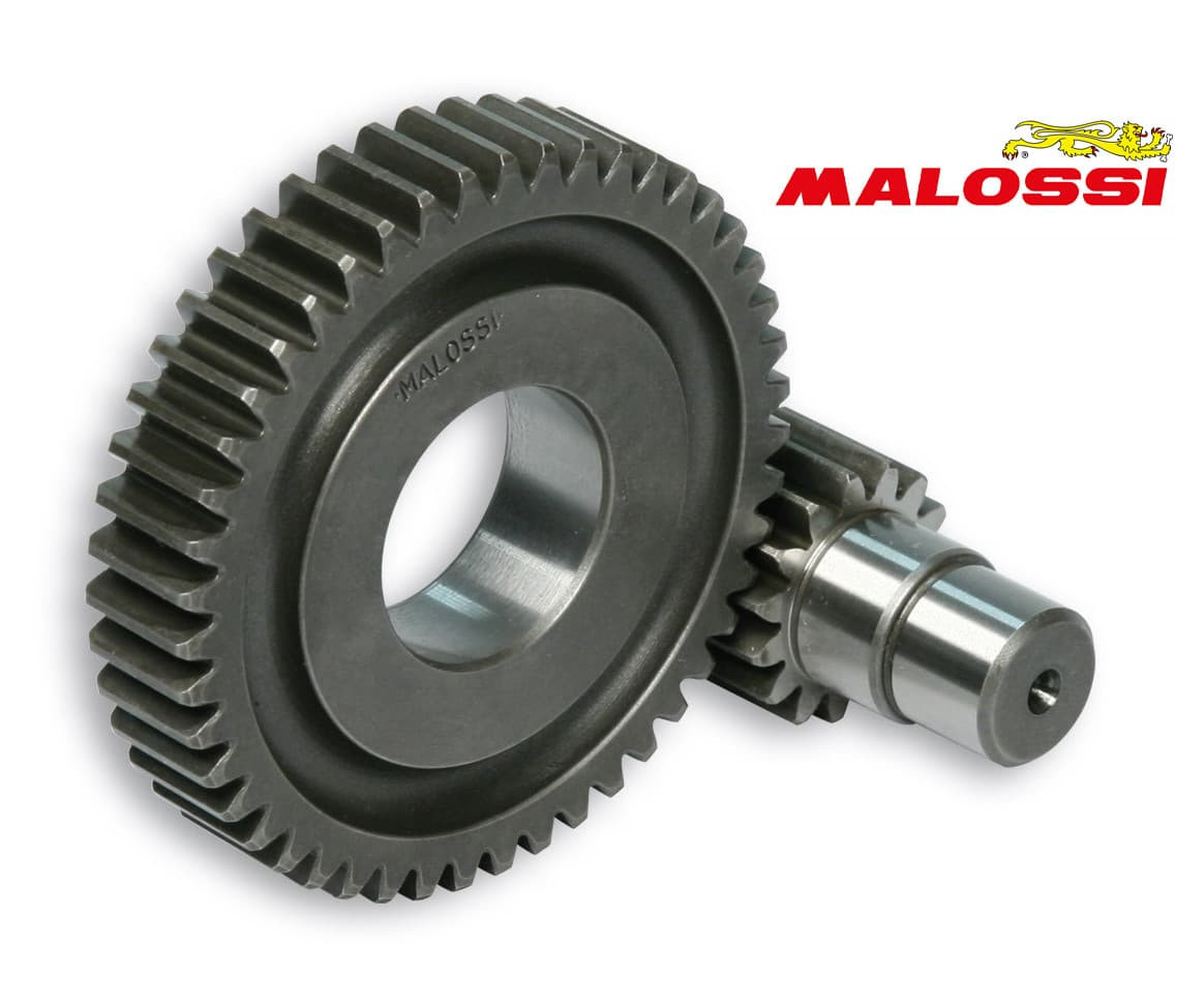 "Secundaire Overbrenging Malossi 15/47 | Piaggio 4T 10"""