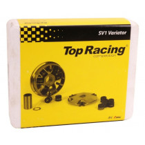 Variateur Top Racing Vision